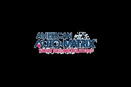 AmericanAutoMatrix